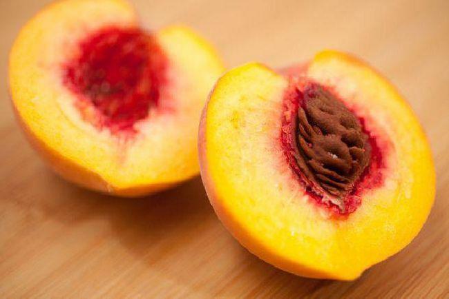 Розкриваються плоди має рослина ... Не розкриваються плоди: приклади