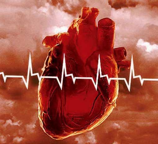 Генетика в допомогу кардіологів