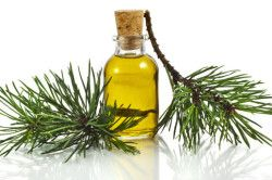Користь ялицевої олії при герпесі